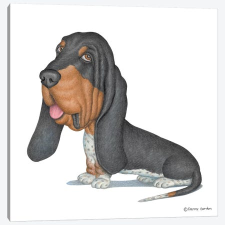 Basset Hound Canvas Print #DNG3} by Danny Gordon Canvas Art Print