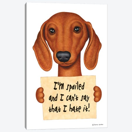 Dachshund I'm Spoiled 3-Piece Canvas #DNG50} by Danny Gordon Canvas Art