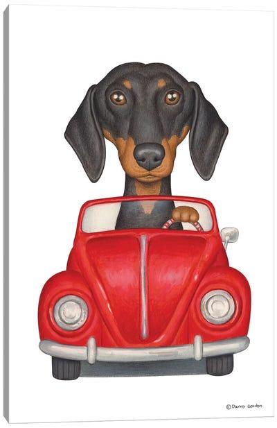 Dachshund Red Beetle Canvas Art Print