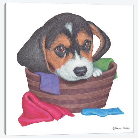 Beagle In Laundry Basket Canvas Print #DNG5} by Danny Gordon Canvas Wall Art