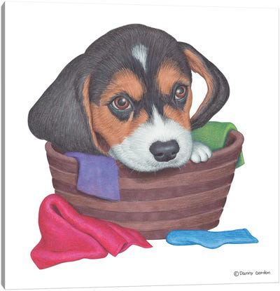 Beagle In Laundry Basket Canvas Art Print