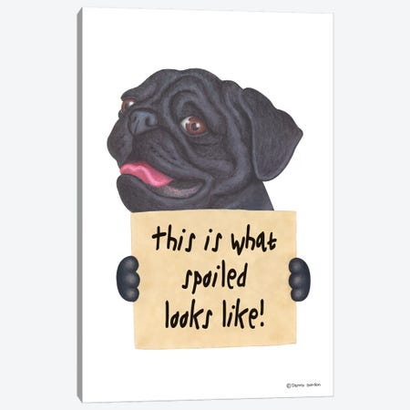 Black Pug Canvas Print #DNG8} by Danny Gordon Art Print