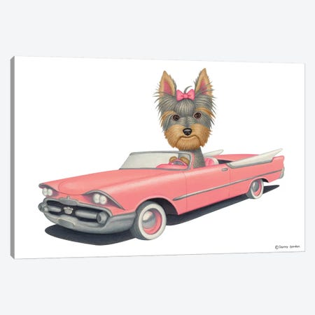 Yorkshire Terrier Pink Car Canvas Print #DNG99} by Danny Gordon Canvas Art