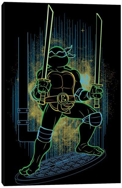 Shadow Of The Blue Ninja Canvas Art Print