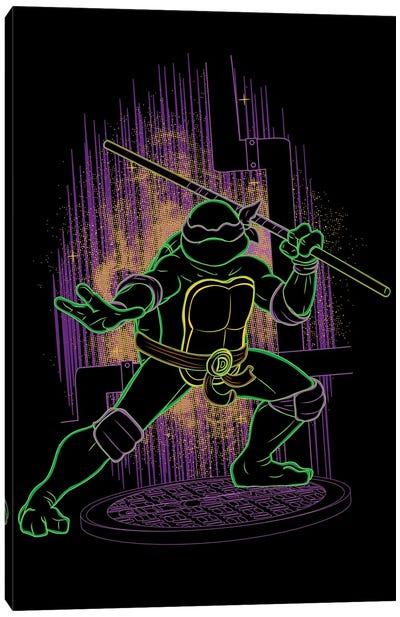 Shadow Of The Purple Ninja Canvas Art Print