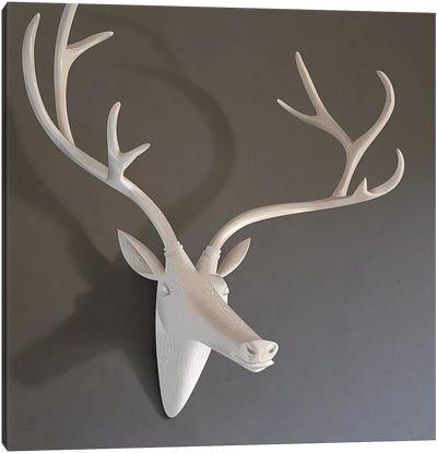 Still Life Deer Canvas Art Print