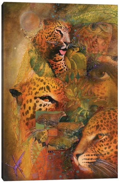 Whiskers Canvas Art Print