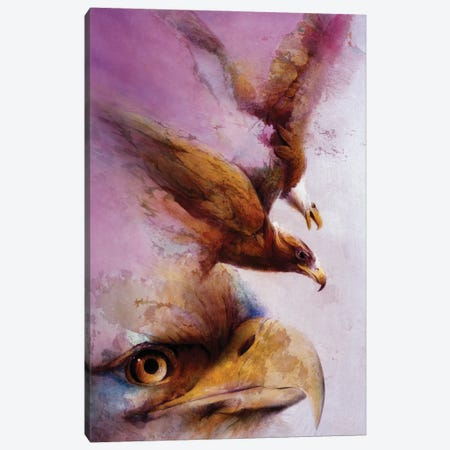 Eye Of The Eagle Canvas Print #DNT42} by Denton Lund Canvas Artwork