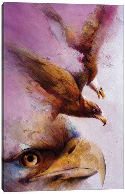 Eye Of The Eagle Canvas Art Print