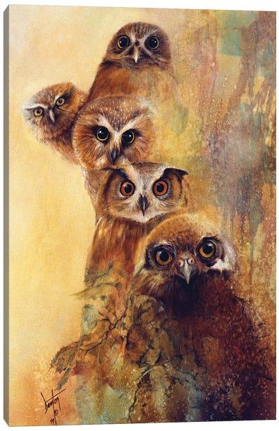 Owl Expressions Canvas Art Print