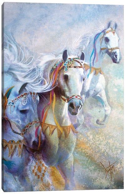 Arabian Jewels Canvas Art Print
