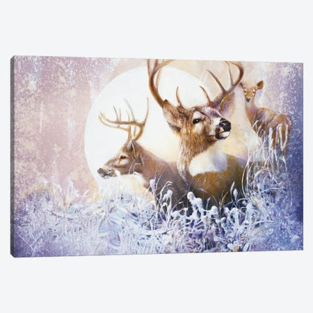 Snow Moon Canvas Print #DNT91} by Denton Lund Art Print