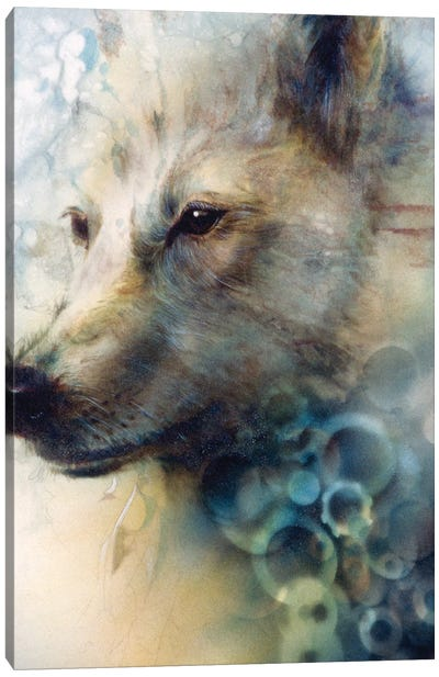 Snow Wolf Canvas Art Print