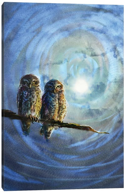 Baby Owls Canvas Art Print