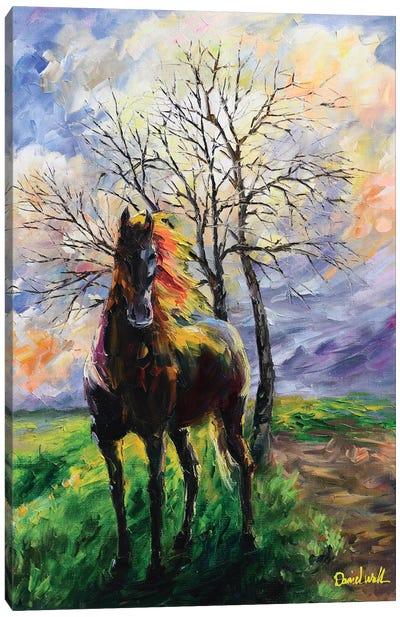 One Horse One Tree Canvas Art Print
