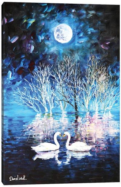Swan Lake Moon Light Canvas Art Print