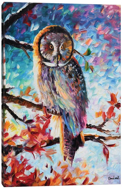 A Beautiful Owl Canvas Art Print
