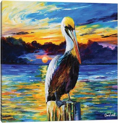 A Pelican Canvas Art Print