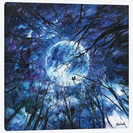 Mega Sky Canvas Print #DNW92} by Daniel Wall Canvas Artwork