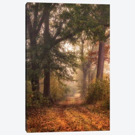 Autumn's Walk I Canvas Print #DNY114} by Danny Head Canvas Wall Art