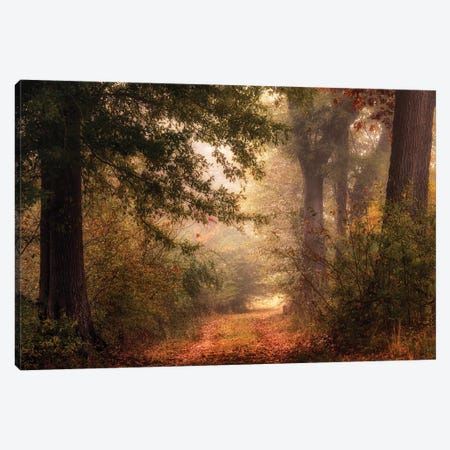 Autumn's Walk II Canvas Print #DNY115} by Danny Head Canvas Wall Art