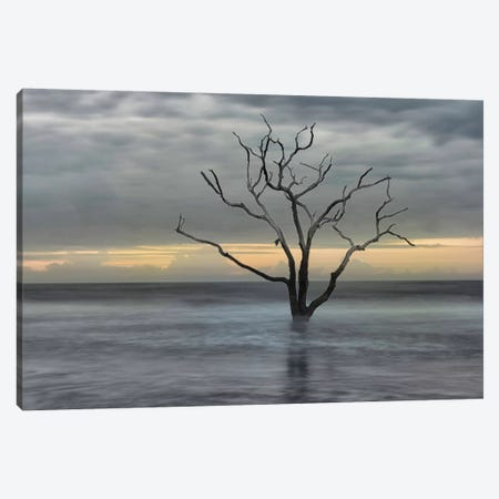 Gray Skies Canvas Print #DNY12} by Danny Head Canvas Artwork