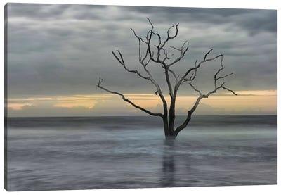 Gray Skies Canvas Art Print