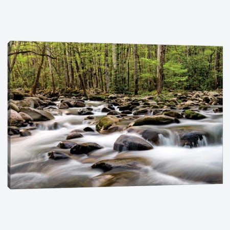 Rocky Flow Canvas Print #DNY24} by Danny Head Canvas Wall Art