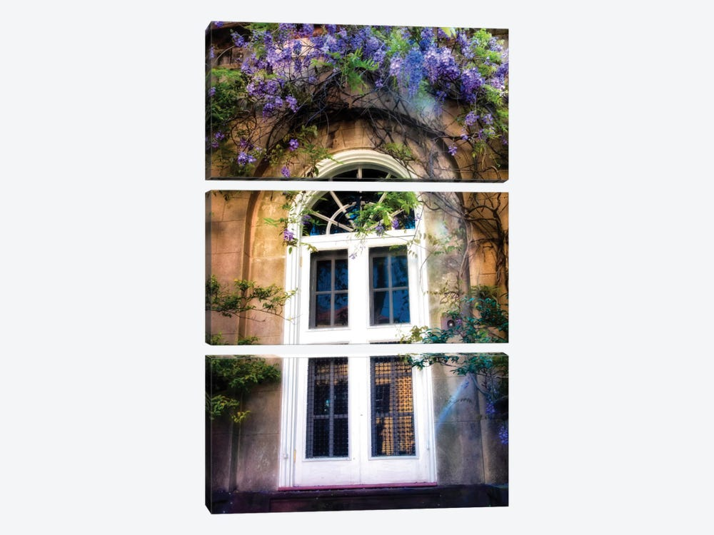 Wisteria 3-piece Canvas Art Print
