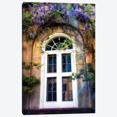 Wisteria Canvas Print #DNY37} by Danny Head Art Print