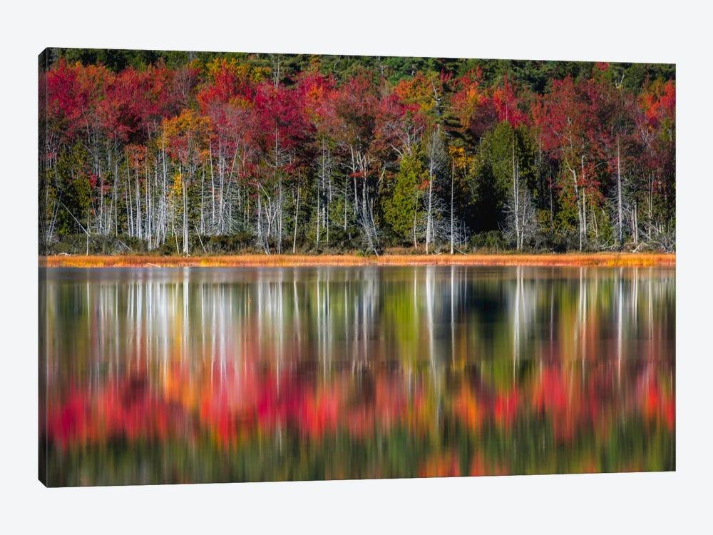 Autumn Reflections by Danny Head 1-piece Canvas Art Print