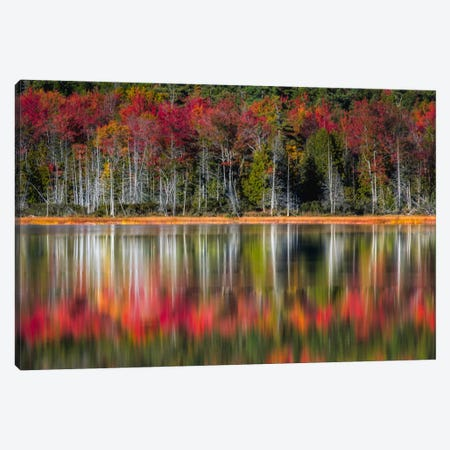 Autumn Reflections Canvas Print #DNY40} by Danny Head Art Print