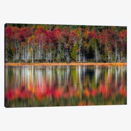 Autumn Reflections Canvas Print #DNY40} by Danny Head Art Print