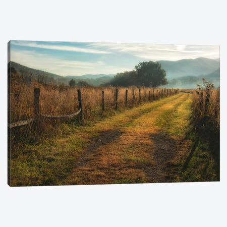 Grassy Lane Canvas Print #DNY46} by Danny Head Canvas Art