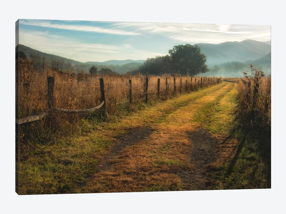 Grassy Lane by Danny Head 1-piece Canvas Art Print