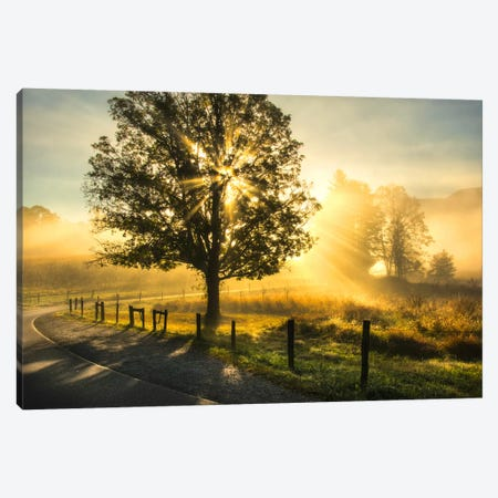Wake Up Call Canvas Print #DNY51} by Danny Head Canvas Art