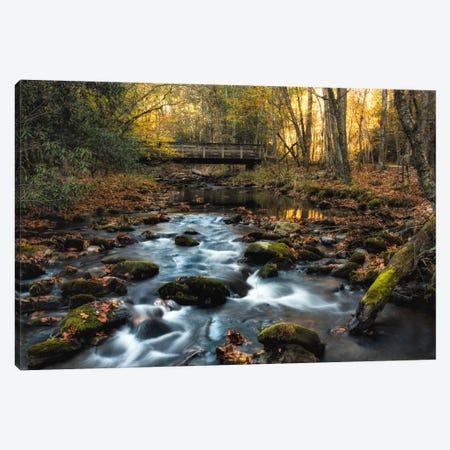Warm Sky Light Canvas Print #DNY52} by Danny Head Canvas Artwork