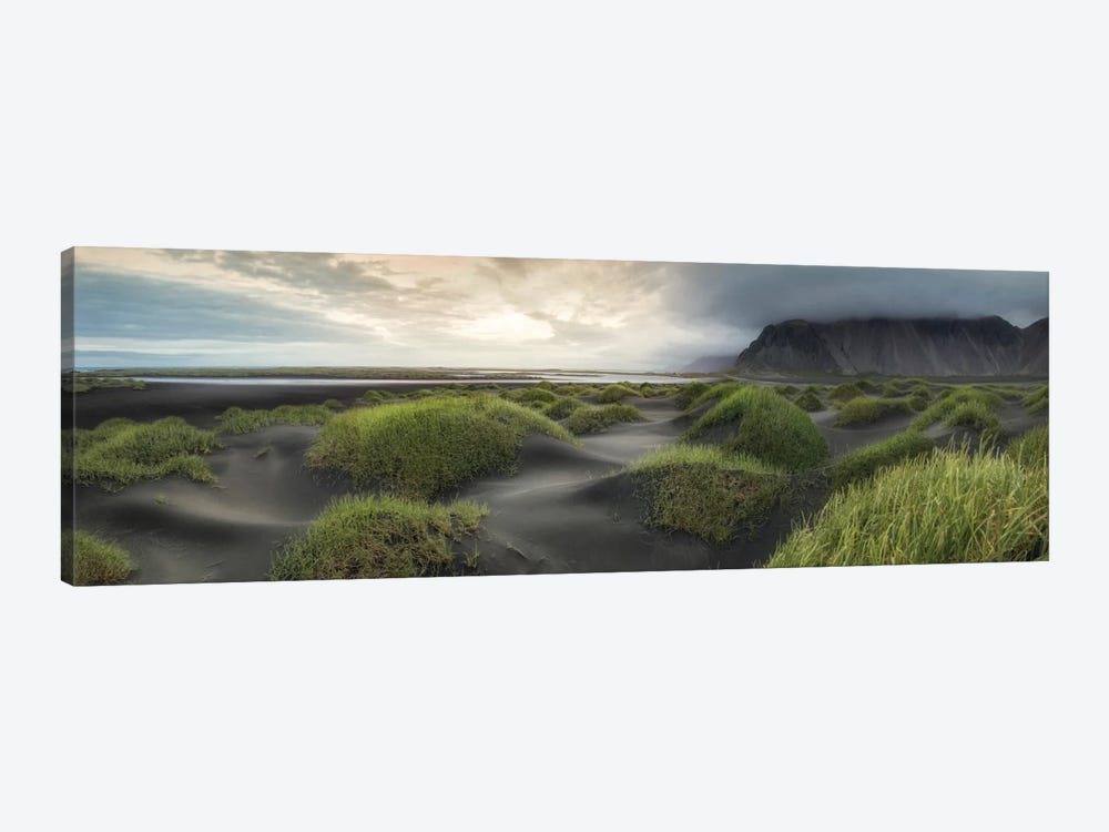 Black Dunes Panorama by Danny Head 1-piece Art Print