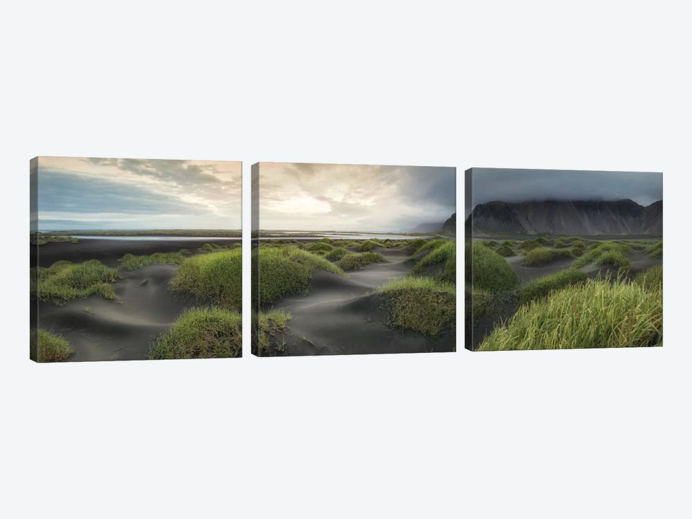 Black Dunes Panorama by Danny Head 3-piece Art Print