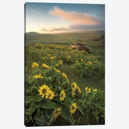 Forgotten Canvas Print #DNY65} by Danny Head Canvas Art
