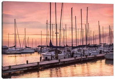 Set To Sail Canvas Art Print