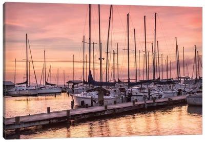 Set To Sail Canvas Art Print