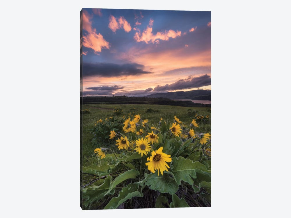 Sunset at The Gorge by Danny Head 1-piece Canvas Print