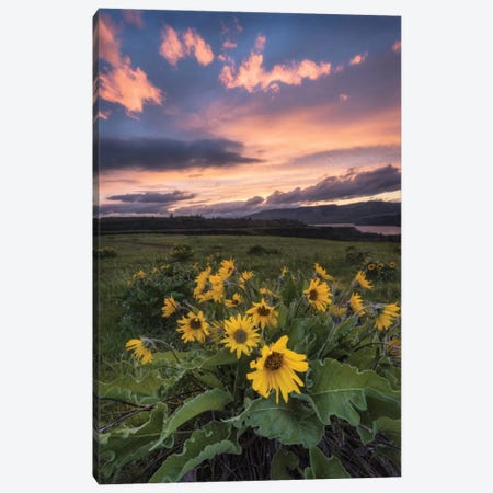 Sunset at The Gorge Canvas Print #DNY73} by Danny Head Canvas Wall Art