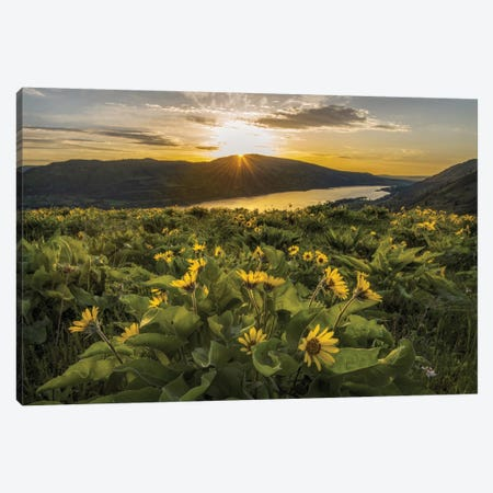 Wake Up Call Canvas Print #DNY75} by Danny Head Canvas Print