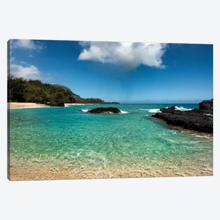 Paradise Canvas Print #DNY81} by Danny Head Art Print