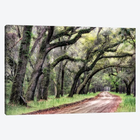 Dirt Road II Canvas Print #DNY9} by Danny Head Canvas Wall Art