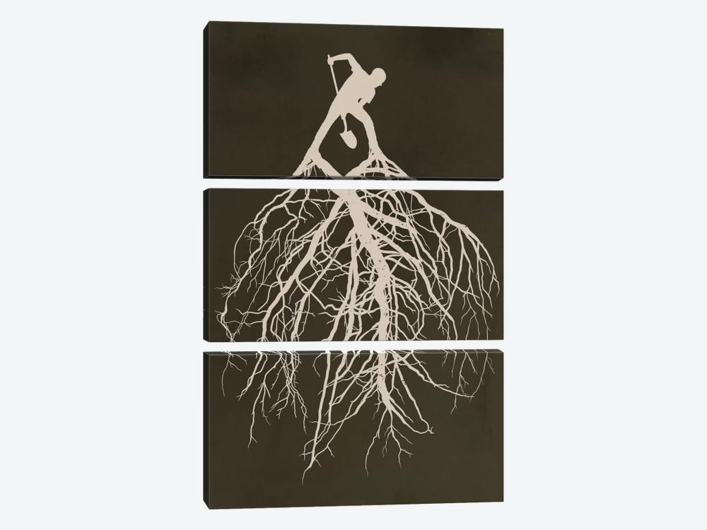 Know Your Roots by Rob Dobi 3-piece Canvas Art