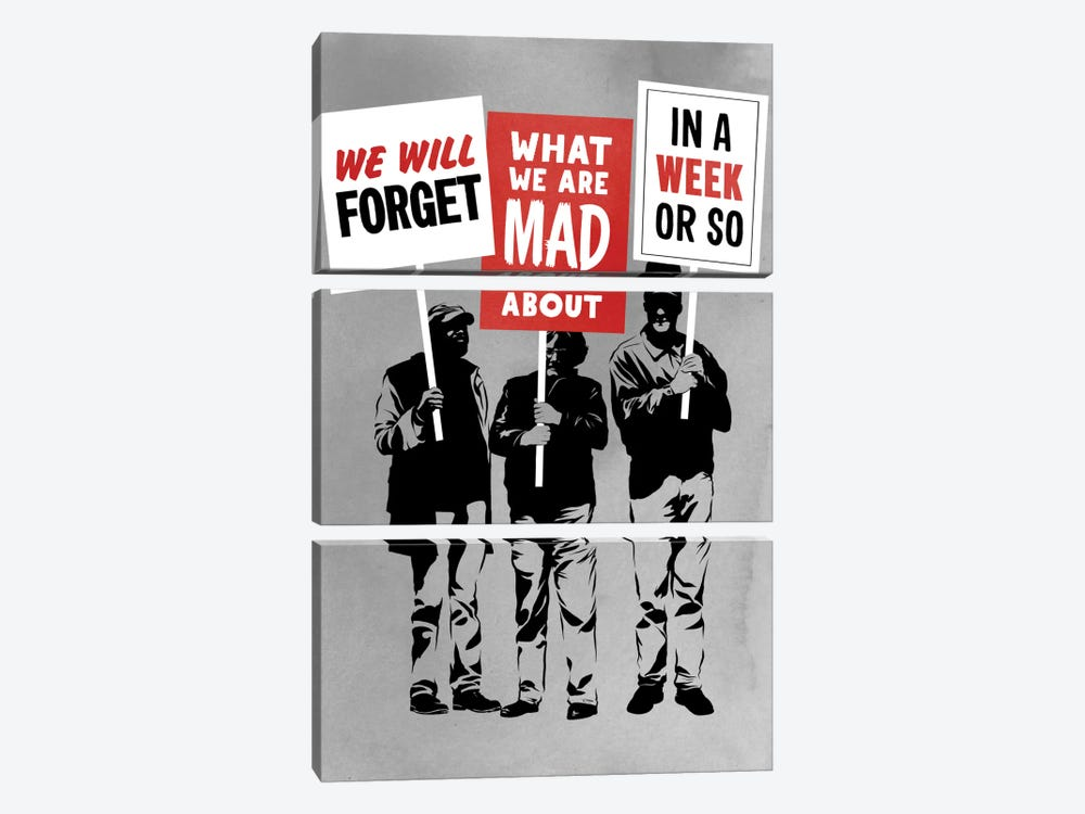 Semi-Protesting by Rob Dobi 3-piece Canvas Artwork