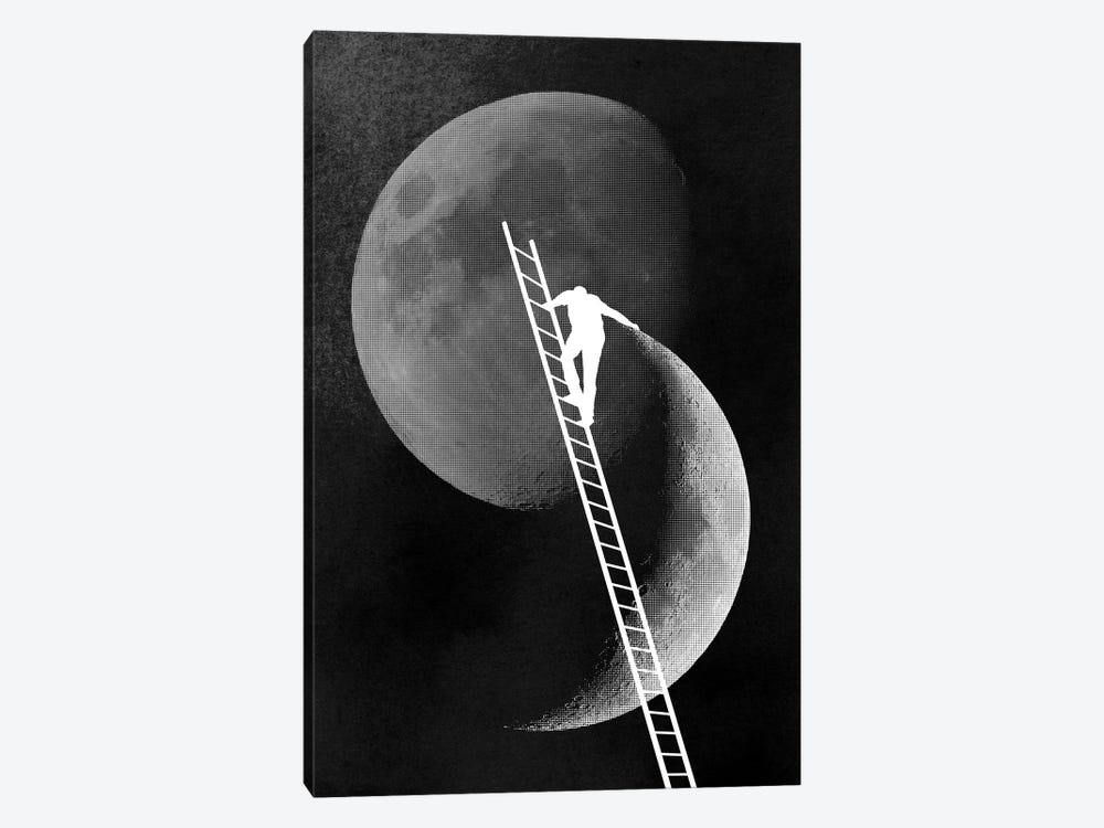 Light Side Of The Moon by Rob Dobi 1-piece Canvas Wall Art